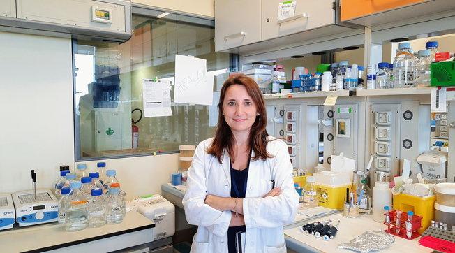 Sclerosi multipla progressiva, identificata una proteina chiave nel processo neurodegenerativo